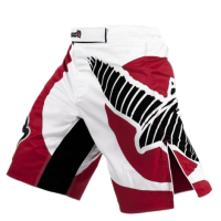 Шорты Hayabusa Chikara Fight Shorts Red