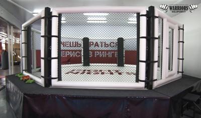 MMA Клетка