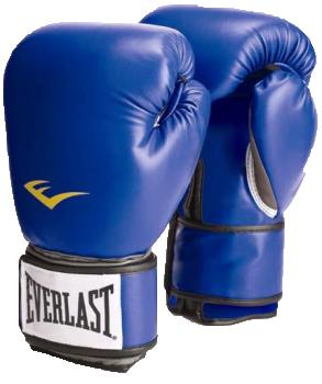 Перчатки тренировочные PU Pro Style Anti-MB Youth синие