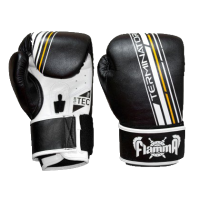 Боксерские перчатки Flamma Terminator